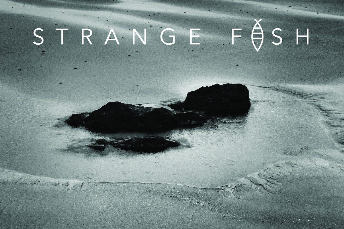 Yaşam Hancılar and Strange Fish